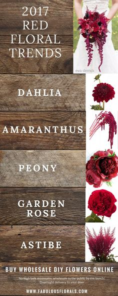TW: 2017 red wedding flower trends so your colour scheme is bang on trend! All the flowers except the peony are seasonally available and work well with your colour scheme. Red Wedding Flowers, Floral Wedding, Fall Wedding, Wedding Bouquets, Diy Wedding, Wedding Book, Wedding Ideas, Geek Wedding, Wedding Colors