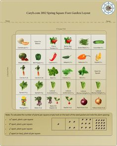 great info about square foot gardening and how many plants to fit per square foot