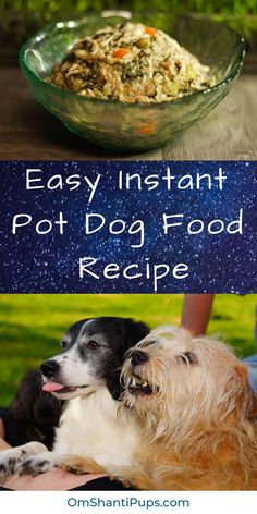 Have you seen all the scary major dog food brand recalls? There have been so many that it pushed me to finally start changing to homemade dog food. The Instant Pot makes it so easy to make homemade, healthy dog food! Read on for an Instant Pot dog Dog Biscuit Recipes, Dog Treat Recipes, Healthy Dog Treats, Dog Food Recipes, Healthy Dog Food Brands, Doggie Treats, Healthy Food, Homemade Dog Cookies, Homemade Dog Food