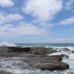 Snapper Rock #australia #straya #queensland #goldcoast #snapperrocks #trip #daytrip #travel #adventure #enjoy #explore #timeofmylife #relax #outdoors #nature #naturelover #nofilter #beach #beachdaysarethebestdays #loveit #goodtimes #goodlife #amazing #waves #lovelife  by dreamcatcher.__