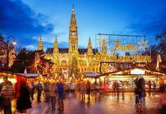 Rathaus and christmas market in Vienna, Austria Translation Merry Christmas Copyright S. Vienna Christmas, Best Christmas Markets, Christmas Markets Europe, Holiday Market, Magical Christmas, Christmas Fun, Christmas Breaks, Christmas Cruises, Holiday Trip