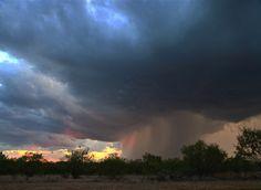 Jones County, TX, Sept. 17, 2011  Photographer: Steve Templeton