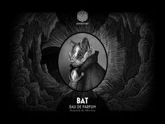 Youtube Ouch110 reviews Zoologist Perfumes' Bat