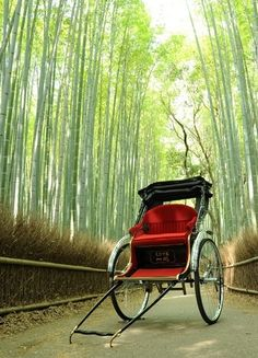 Get a unique view of Japan's most beautiful destinations from a jinrikisha (rickshaw). (Click through for more.)