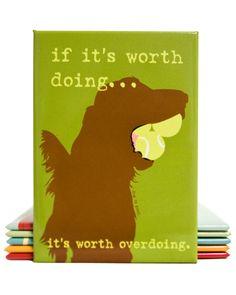 If it's worth doing, it's worth overdoing.