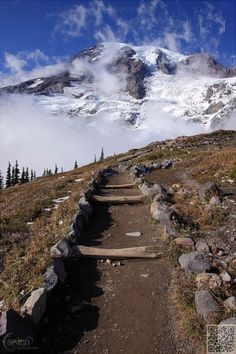 Skyline Trail Mt Rainier, Seattle, USA - 48 of the World's Greatest Hiking Trails ...