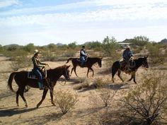 Hidden Valley Stables - horseback riding in Maricopa AZ