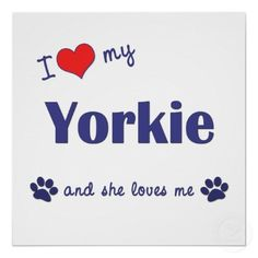 I <3 My Yorkie and She Loves Me. So true  and I also dedicate this to my yorkie Bella ballerina!