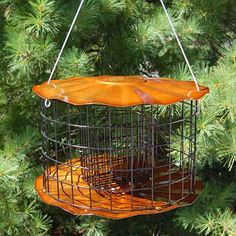 Gardens feed the spirit's longing for appeal and grace as it provides a venue to witness the marvel of nature and the comforts of house. Caged Bird Feeders, Small Bird Feeder, Suet Bird Feeder, Bird Seed Feeders, Squirrel Resistant Bird Feeders, Wildlife Decor, Decorative Bird Houses, Backyard Birds, Small Birds