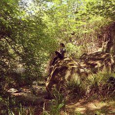 Κάντε ένα μικρό περίπατο και μαγευτείτε από τη φυσική ομορφιά! #Platystomo #ThermaePlatystomou  Photo credits: @renu_r2