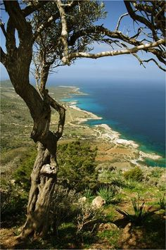 Akamas, Cyprus ....one of the most beautiful places in my Country!