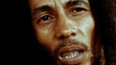 BBC video: Director Kevin Macdonald and Ziggy Marley discuss Bob Marley, his legacy and the making of MARLEY Bob Marley Sons, Julian Marley, Marley Family, Quotes Gif, Best Quotes, Favorite Quotes, Rastafarian Culture, Bob Marley Pictures, Life Tumblr