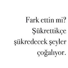 Sabret. Sükret. Şeyret. We can choose to be grateful no matter what  #sabr #sükret #turkish #turkishquotes #quotes #quote #quotestagrams #powerquotes #inspo #inspiration #inspirationalquotes #sunday by hasretdagdelen
