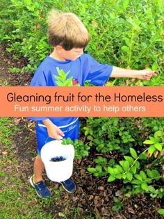 Gleaning Fruit for the Homeless from The House of Hendrix--a great activity with benefits for your family and for those suffering from homelessness.