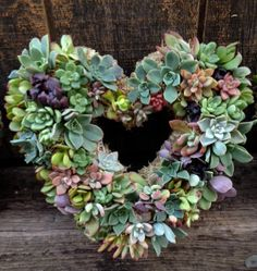 11 Living Succulent Heart Wreath Perfect by WindmillFloralDesign, $69.00