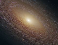 NASA image release Feb. 17, 2011  To see a hd vidoe of this sprial galaxy go to: www.flickr.com/photos/gsfc/5453173577/  The Hubble Space Telescope revealed this majestic disk of stars and dust lanes in this view of the spiral galaxy NGC 2841.  A bright cusp of starlight marks the galaxy's center. Spiraling outward are dust lanes that are silhouetted against the population of whitish middle-aged stars. Much younger blue stars trace the spiral arms.  Notably missing are pinkish emission…