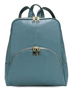 Scarleton Chic Casual Backpack H160861 - Labrador Blue Sc... https://www.amazon.com/dp/B01IO4AYS6/ref=cm_sw_r_pi_dp_x_nSzYybD52X2CT