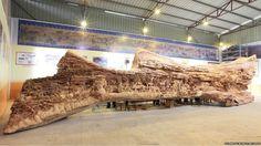 Zheng Chunhui's incredible 12 metre sculpture. See our earlier pin.