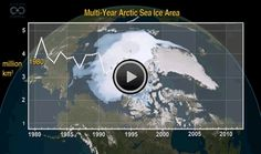 A NASA visualization shows the dramatic loss of thick, multiyear sea ice cover in the Arctic.   Now You Sea It, Now You Don't: Watch Arctic Sea Ice Melt