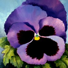 Pansy   Nel's Everyday Painting: Lavender Pansy - SOLD