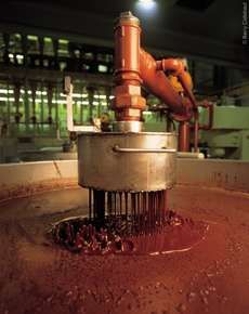 Cocoa nibs are put into grinders so that they can first be ground coarsely, then to a super fine cocoa liquor.