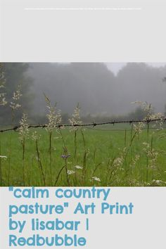 Take a stroll through the Spanish countryside with me. Design available on many other products. Perfect for the nature lover in your life. #calm #nature #hiking #pasture #field #zen #photoart #grass #misty
