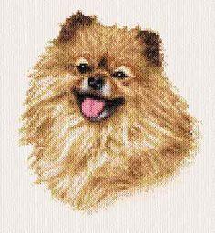 Sassy Pomeranian - cross stitch pattern designed by Marv Schier. Category: Dogs.