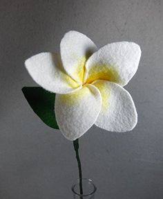 White and Yellow Plumeria Made of Felt - White Plumeria - White Flower - Yellow Flower - Artificial Flower - Fake Flower - Artificial Plumeria - Fake Plumeria - Felt Flower. This is a beautiful flower made of felt that lasts forever! It looks great in a vase by itself or as part of a bouquet. The stem is made of a floral wire, so it is stable but bendable. Price is for ONE flower. If you want another color, please check my shop. If you don't see the color you want there, please message me…