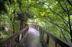 Western North Carolina Nature Center, Asheville, North Carolina