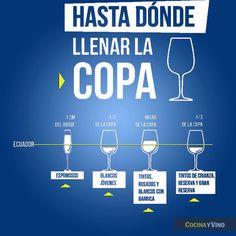 Infografía: Hasta dónde se llena una copa - CocinaChic                                                                                                                                                                                 Más