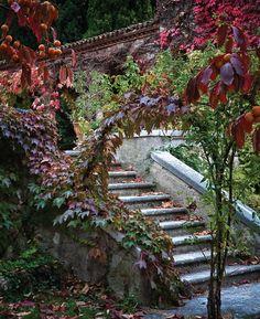 Renaissance landscape design in an Italian garden. Landscape Architecture, Landscape Design, Garden Design, Napa Style, Italian Garden, Autumn Garden, Mediterranean Style, Garden Bridge, Garden Path