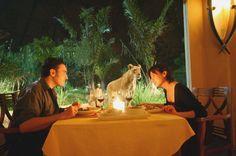 7 Most Unusual Restaurants in Bali