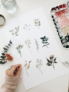 Delicate Florals | Watercolor by Shealeen Louise