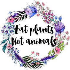 Imagine vegan, animals, and vegetarian Vegetarian Recipes Potluck, Vegetarian Quotes, Vegan Quotes, Vegan Desserts, Vegan Recipes, Go Veggie, Why Vegan, Vegan Shopping, Vegan Lifestyle