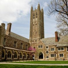 Princeton an option for me?