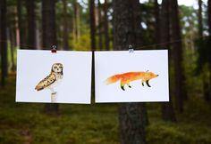 Jana Nachlingerová Ms Gs, Moose Art, Owl, Animals, Illustrations, Printing, Poster, Nice Asses, Animales