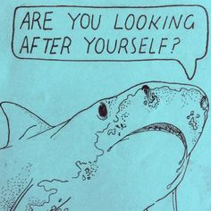 the shark cares about you