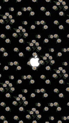 Get Latest Black Wallpaper for iPhone X This Month Daisy Wallpaper, Iphone Background Wallpaper, Trendy Wallpaper, Pretty Wallpapers, Tumblr Wallpaper, Galaxy Wallpaper, Screen Wallpaper, Cool Wallpaper, Pattern Wallpaper