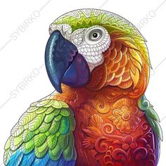 Adult Coloring Page Macaw. Zentangle Doodle by ColoringPageExpress