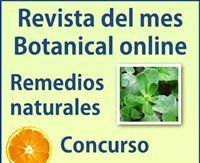 Revista de Plantas de Botanical-online Diabetes, Healthy Vegetarian Diet, Medicinal Plants, Essential Oils, Cancer, Healing, Chakras, Cactus, Places