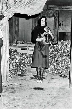 Little Edie posing with a cat in front of the cat food can mountain at Grey Gardens.