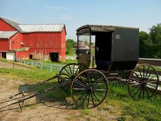"Holmes County, Ohio  ""The Amish are united by a common Swiss-German ancestry, language, and culture, and they marry within the Amish community."""