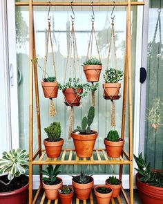 Most up-to-date Absolutely Free Good Pics Plant Hanger rack Ideas Macramé, the art of knotting rope, is just a . Tips When there is small room for the keeping flowerpots, holding flowerpots certainly are a excellent Al Macrame Plant Holder, Plant Holders, Suculentas Interior, Diy Hanging Planter, Planter Ideas, Hanging Flower Pots, Decoration Plante, House Plants Decor, Hanger Rack