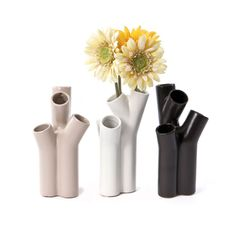 Display your favorite handpicked flowers in our Pipe Dreams Vase to give your bouquet a unique shape. This piece would look great on your desk with a few summer daisies.  Find the Pipe Dreams Vase - Set of 3, as seen in the Saturday Flash Sale Collection at http://dotandbo.com/collections/saturday-flash-sale-2?utm_source=pinterest&utm_medium=organic&db_sku=WGL0005