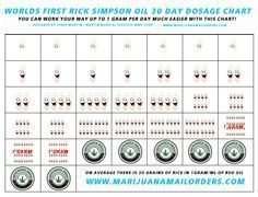 People should start by orally ingesting their dose of Rick Simpson cannabis oil 3 times per day. For the first week each total dose should be the size of a half grain of white rice. After the oil has been taken for a week, start to double the dose. The dose should be doubled every four days until 1 gram/ml per day is ingested. Most people to get to the point where they can ingest 1 gram/ml per day in about 30-35 days. Once ingesting one gram/ml of oil per day is achieved, dosage should…