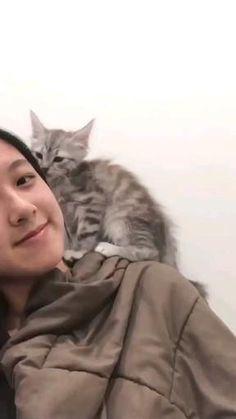 Human best friend (cat), are you agree? #cat #cutecat #pet Cute Little Kittens, Kittens Cutest, Cats And Kittens, Cute Cats, Funny Cats, Cute Cat Gif, Beautiful Cats, Make Me Smile, Best Friends