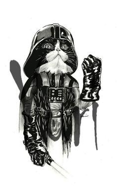 Star Wars: Cat Vader