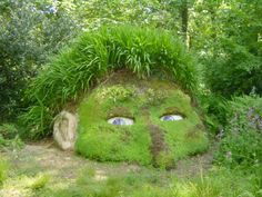 Curioso es...   Lost Gardens of Heligan