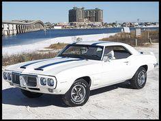 1969 Firebird, Pontiac Firebird Trans Am, Pony Car, American Muscle Cars, Sexy Cars, Gto, Cool Cars, Dream Cars, Classic Cars
