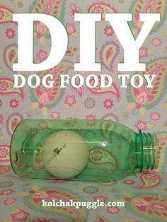DIY Dog Food Toy